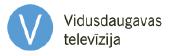 logo_vdtv